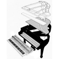 01519-piano-exploded-view