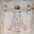 01239-da-vinci-golden-section