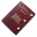 01490-passport-hole