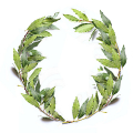 01117-wreath-laurel