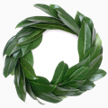 01116-wreath-laurel