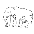 01387-elephant-optical-illusion